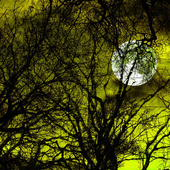 full_moon_alt_chartreuse